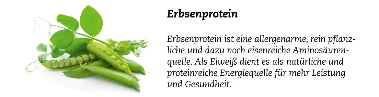 Zutat_Erbsenprotein